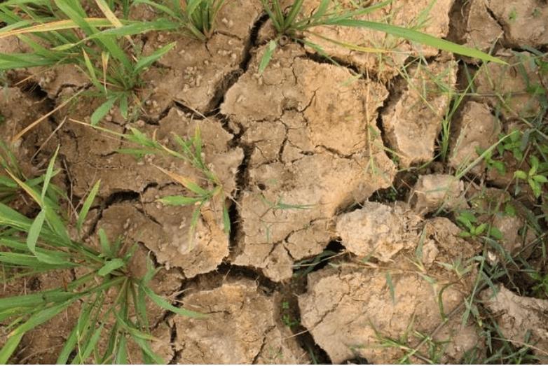 Tổng kết về vấn đề biến đổi khí hậu