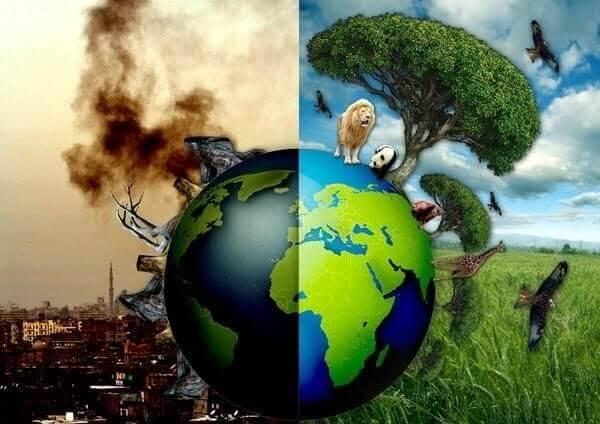 Những hậu quả của ô nhiễm không khí để lại trong cuộc sống của con người