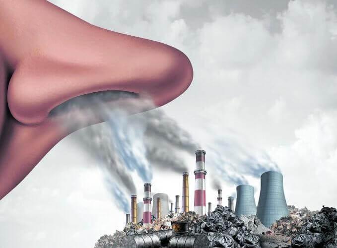 Nguyên nhân dẫn đến tình trạng ô nhiễm không khí như hiện nay